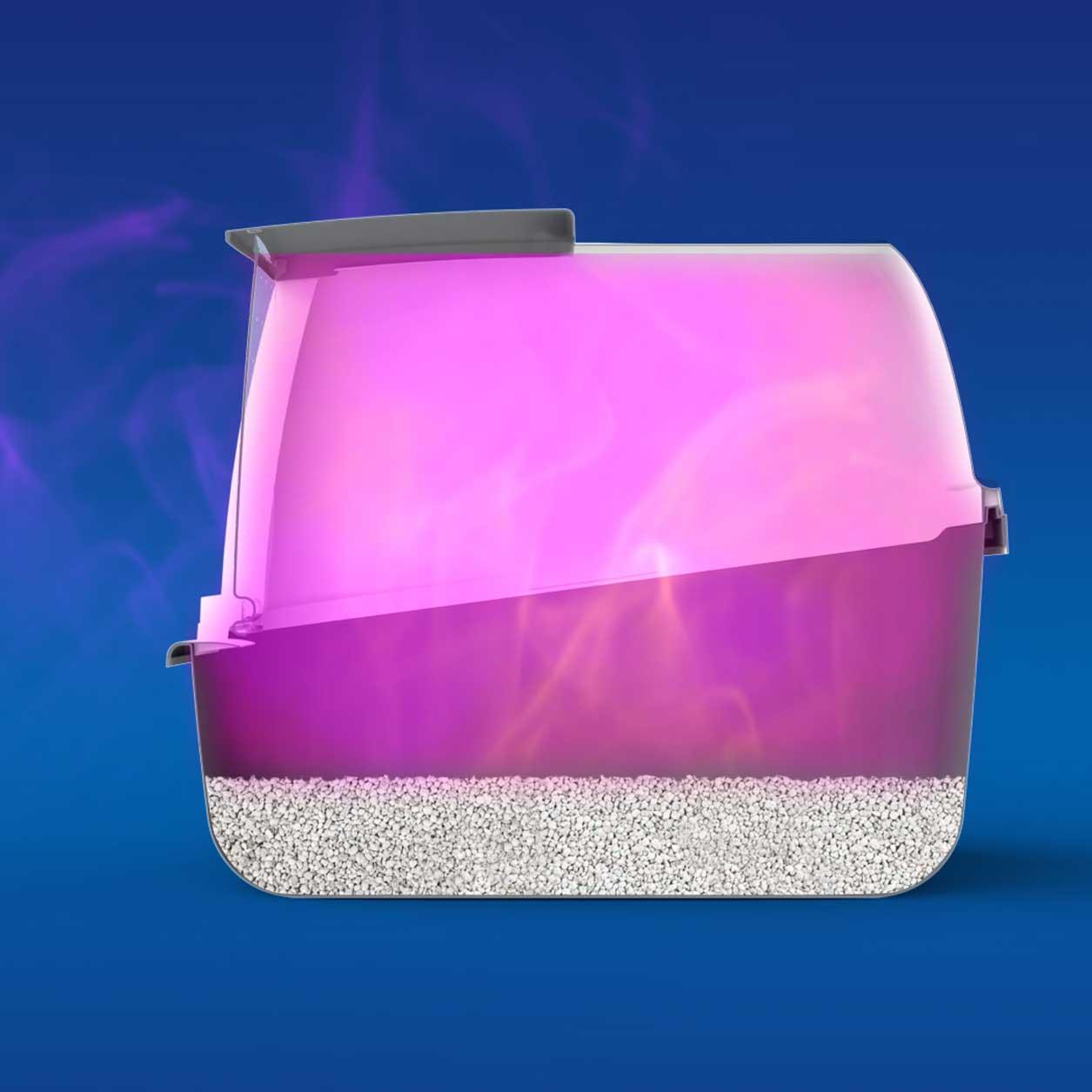 Simulation of ammonia odour in a catpen
