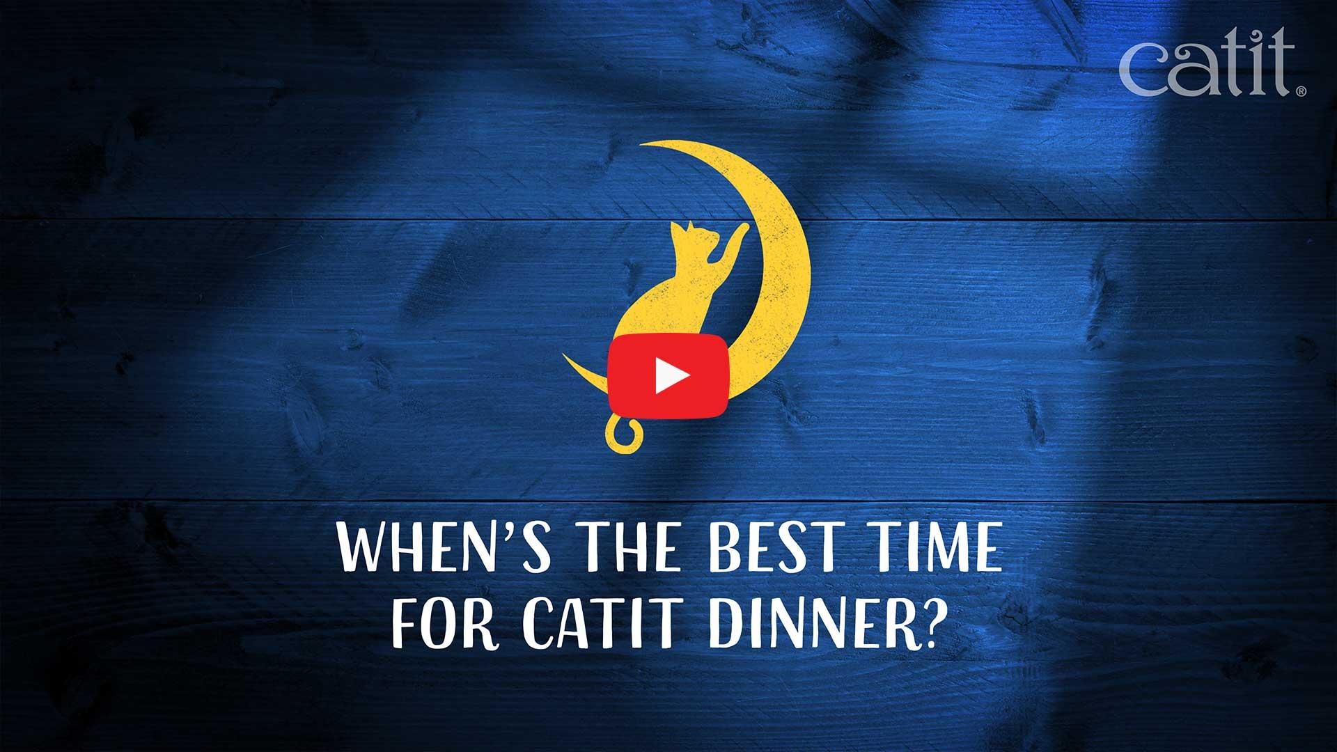 Catit Dinner Thumbnail