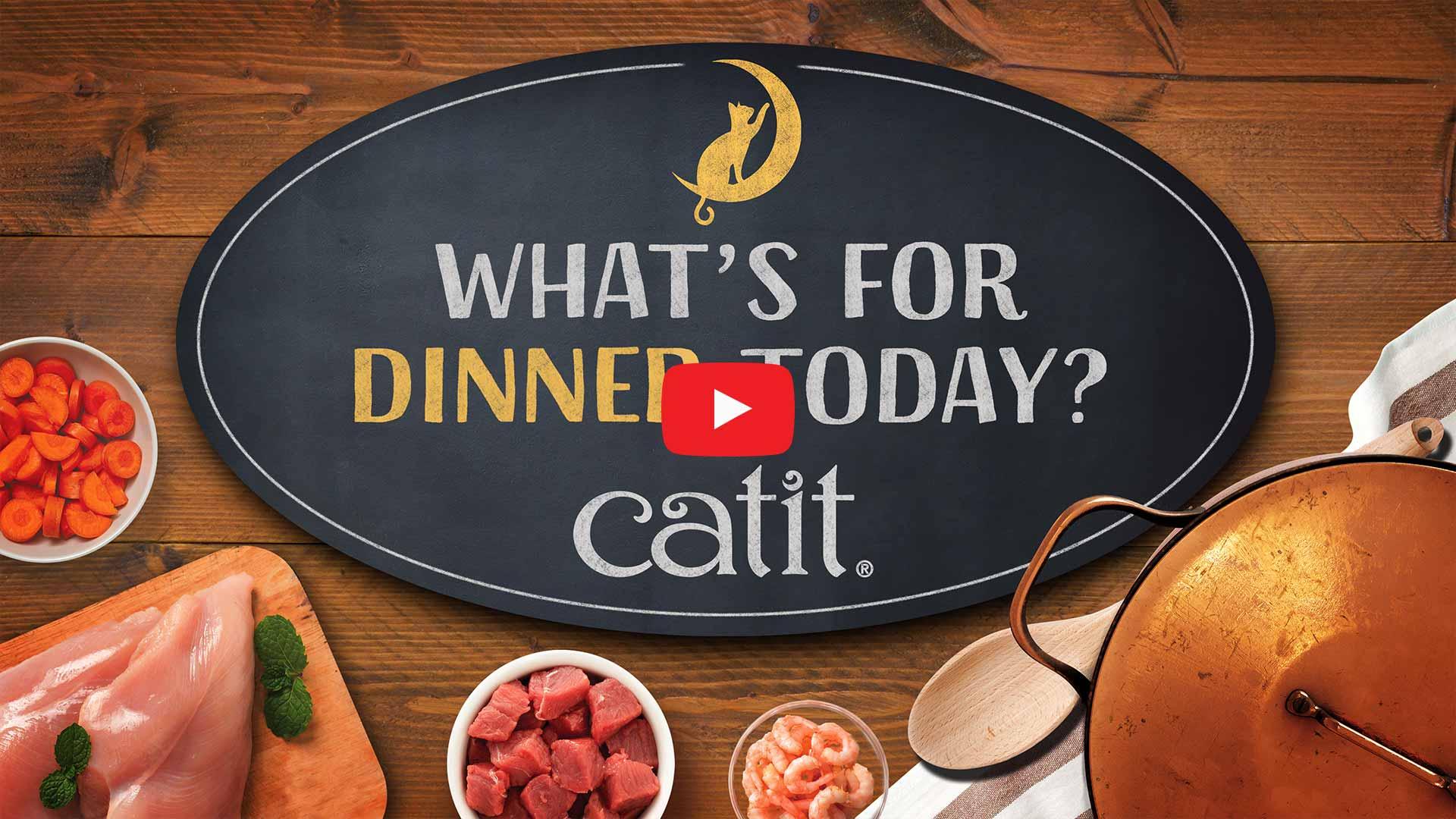 Thumbnail Youtube video Catit Dinner