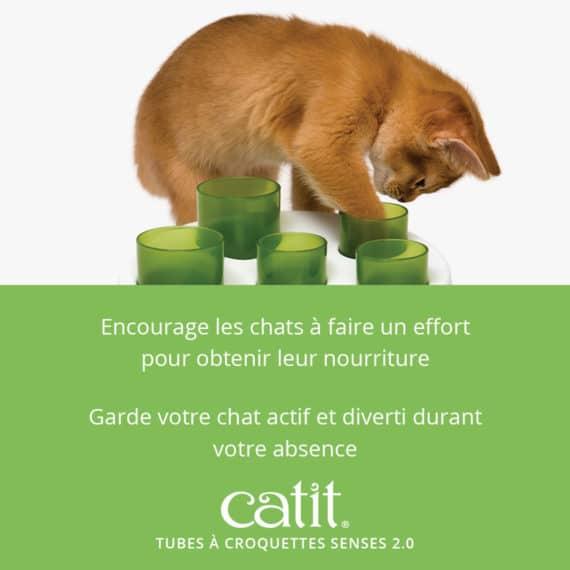 Tubes à croquettes Senses 2.0 - encourage les chats à faire un effort pour obtenir leur nourriture et garde votre chat actif et diverti durant votre absence