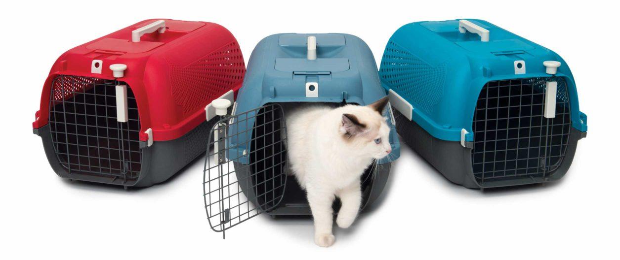 Découvrez les trois couleurs de la cage transport de Catit
