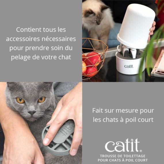 Trousse de toilettage pour chats à poil court Catit- Contient tous les accessoires nécessaires pour prendre soin du pelage de votre chat. Fait sur mesure pour les chats à poil court