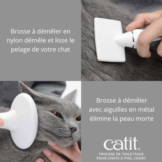 Trousse de toilettage pour chats à poil court Catit- Brosse à démêler en nylon démêle et lisse le pelage de votre chat. Brosse à démêler avec aiguilles en métal élimine la peau morte