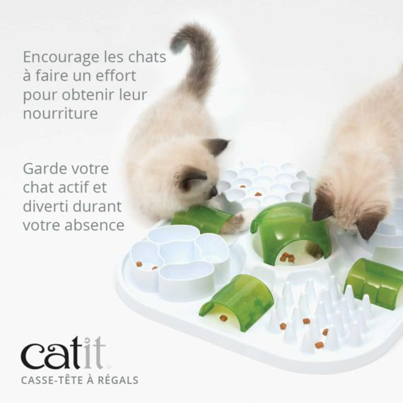 Casse-tête à régals - Encourage les chats à faire un effort pour obtenir leur nourriture et garde votre chat actif et diverti durant votre absence