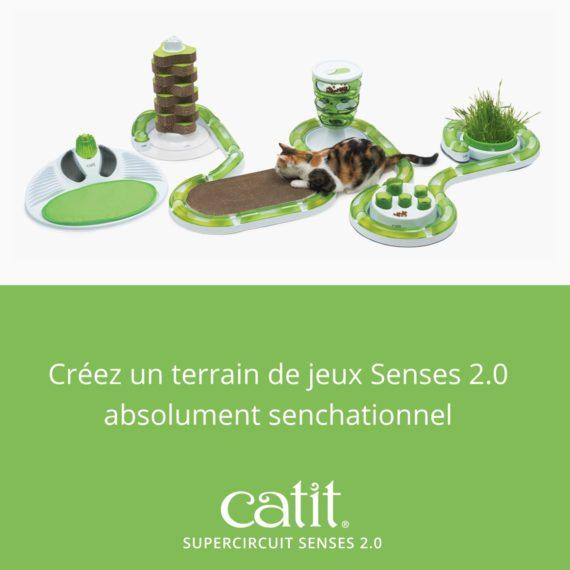 Créez un terrain de jeux Senses 2.0 absolument senchattionnel avec le Supercircuit Senses 2.0 Catit