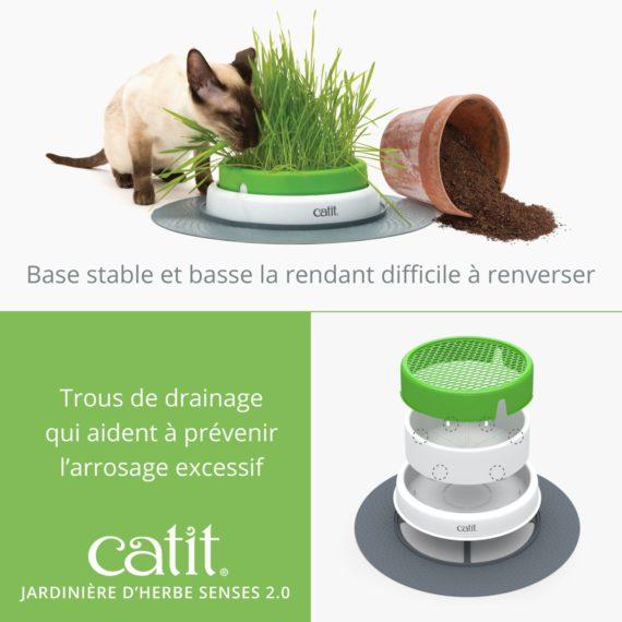 Jardinière d'herbe Senses 2.0 base stable et basse la rendant difficile à renverser et a trous de drainage qui aident à prévenir l'arrosage excessif
