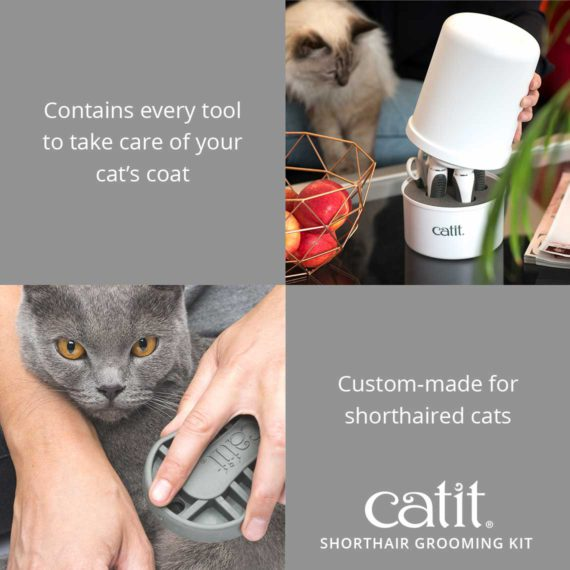 Catit Shorthair Grooming Kit contains every tool to take care of your cat's coat and is custom-made for shorthaired cats