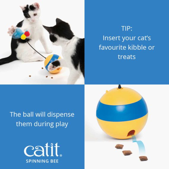 Catit Spinning Bee – TIP: Insert your cat's favourite kibble or treats, the ball will dispense them during play