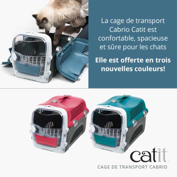 Cage de transport Cabrio Catit – La cage de transport est confortable, spacieuse et sûre pour les chats. Elle est offerte en trois nouvelles couleurs