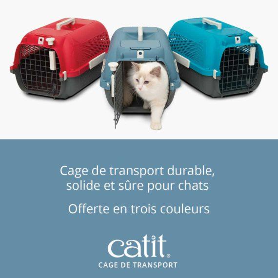 Cage de transport Catit - Cage de transport durable, solide et sûre pour chats et offerte en trois couleurs