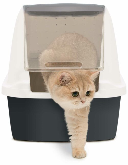 Our litter won't stick to your litter box or scoop, which makes cleaning and scooping much quicker and easier