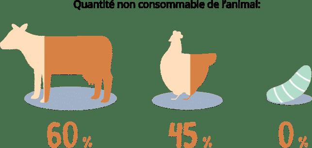 Nuna - Alimentation de première qualité