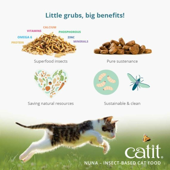 Catit Nuna - Little grubs, big benefits! - Insects, a superfood