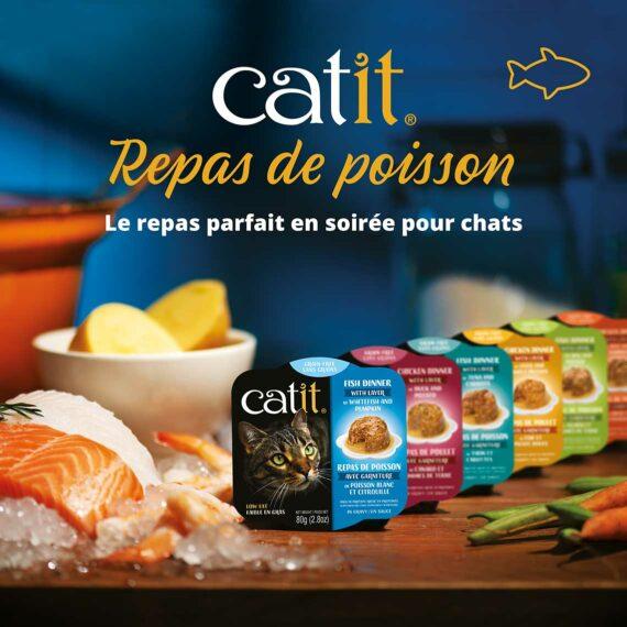 Repas de poisson Catit - le repas parfait en soirée pour chats