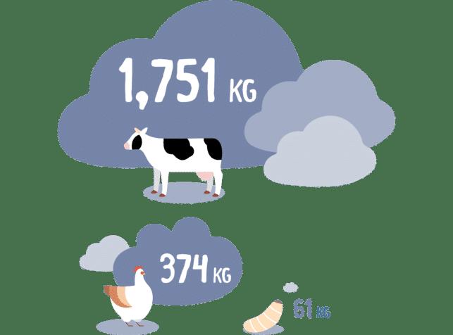 Nuna - Low carbon emission